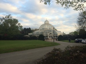 Hire A Wedding & Function Band in Liverpool & Merseyside The Palm House, Sefton Park.jpg